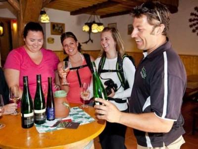 Wine Tasting Bike Tour departing Vienna